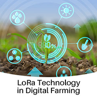 Digital Farming Is Creating A More Plentiful, Sustainable Food System (Pilot Project)