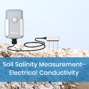 Soil Salinity Measurement- Electrical Conductivity