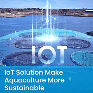 IoT Solution Make Aquaculture More Sustainable